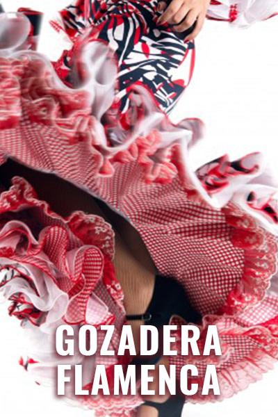 STEPS ON ZOOM Poster Gozadera Flamenca